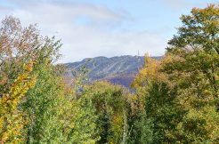 CAP-TREMBLANT | 1 bed Condo for rent in Mont-Tremblant